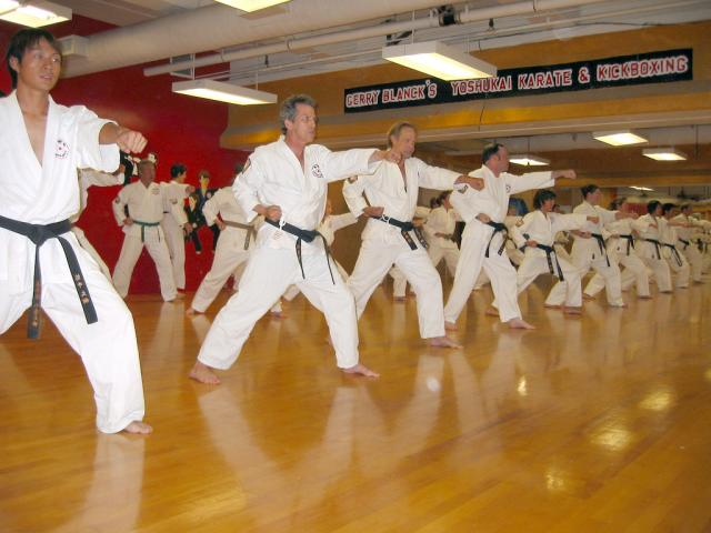 Gerry Blanck's Adult Karate Class in Pacific Palisades